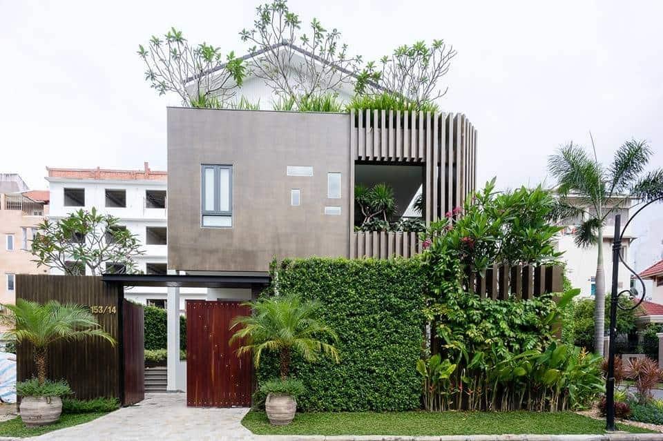 tường cây xanh biệt thự