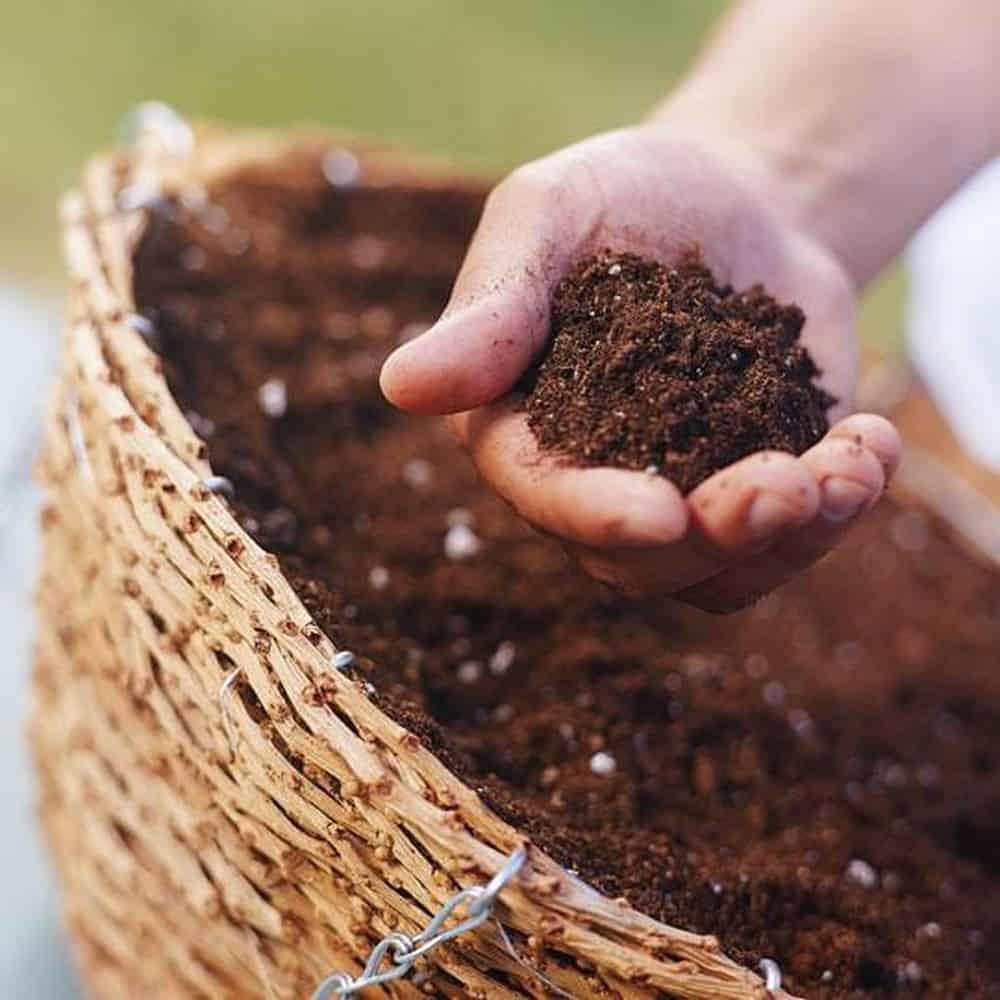 thực hiện trộn đất trồng cho cây hoa