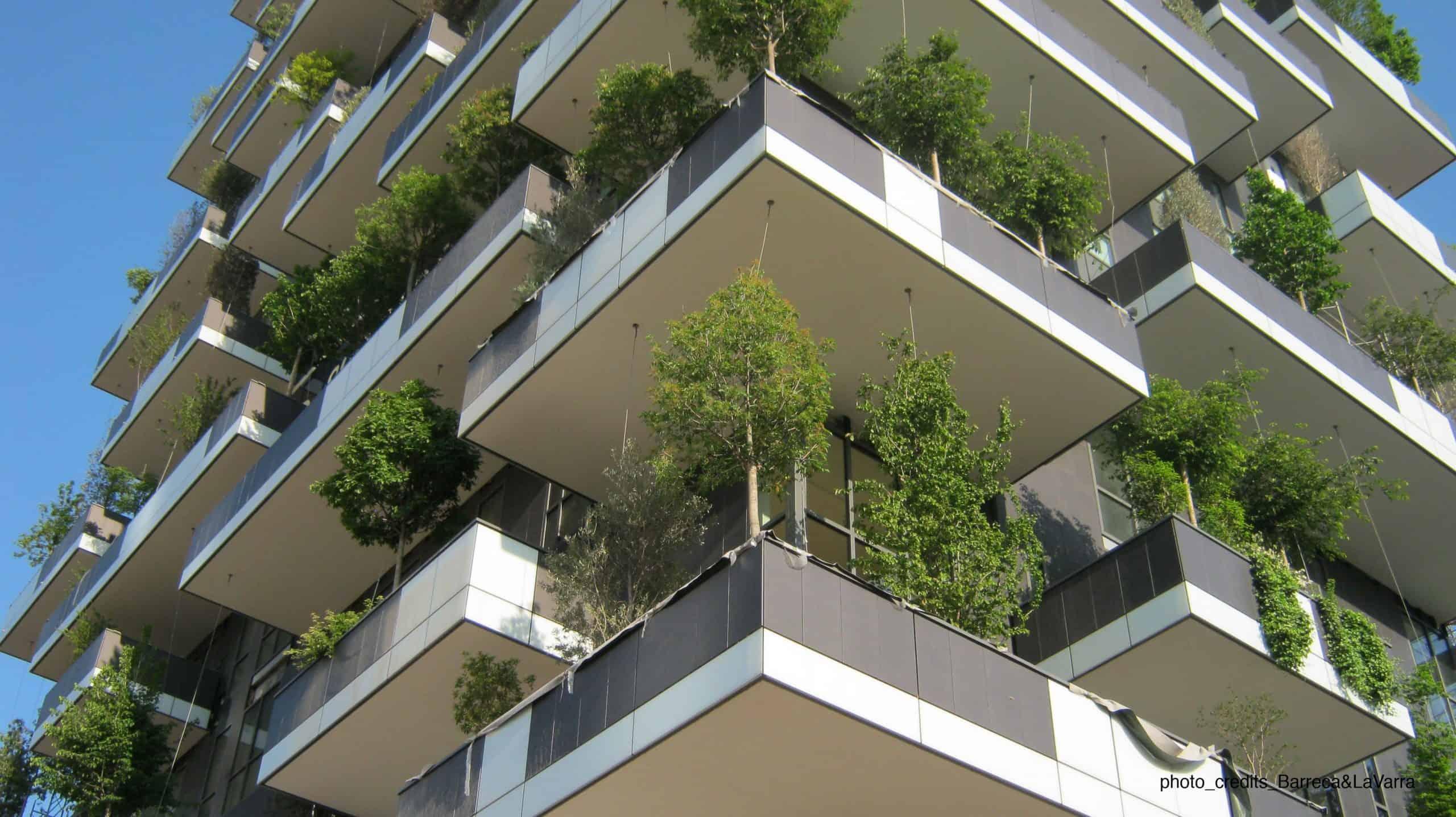 ban công cây xanh chung cư