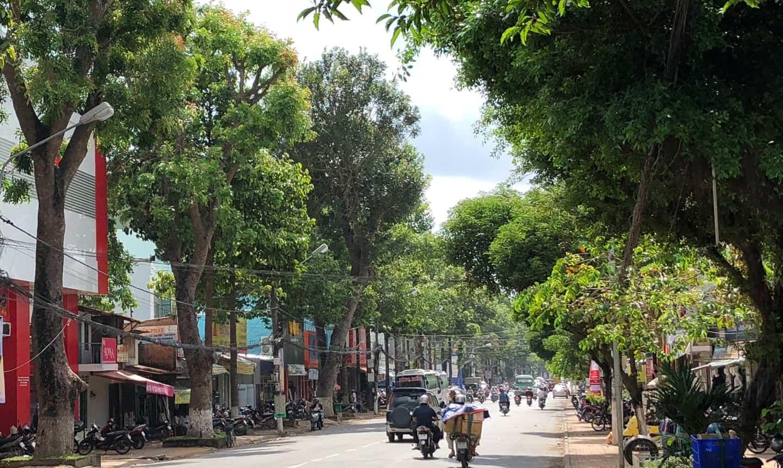 cảnh quan đô thị tại tphcm