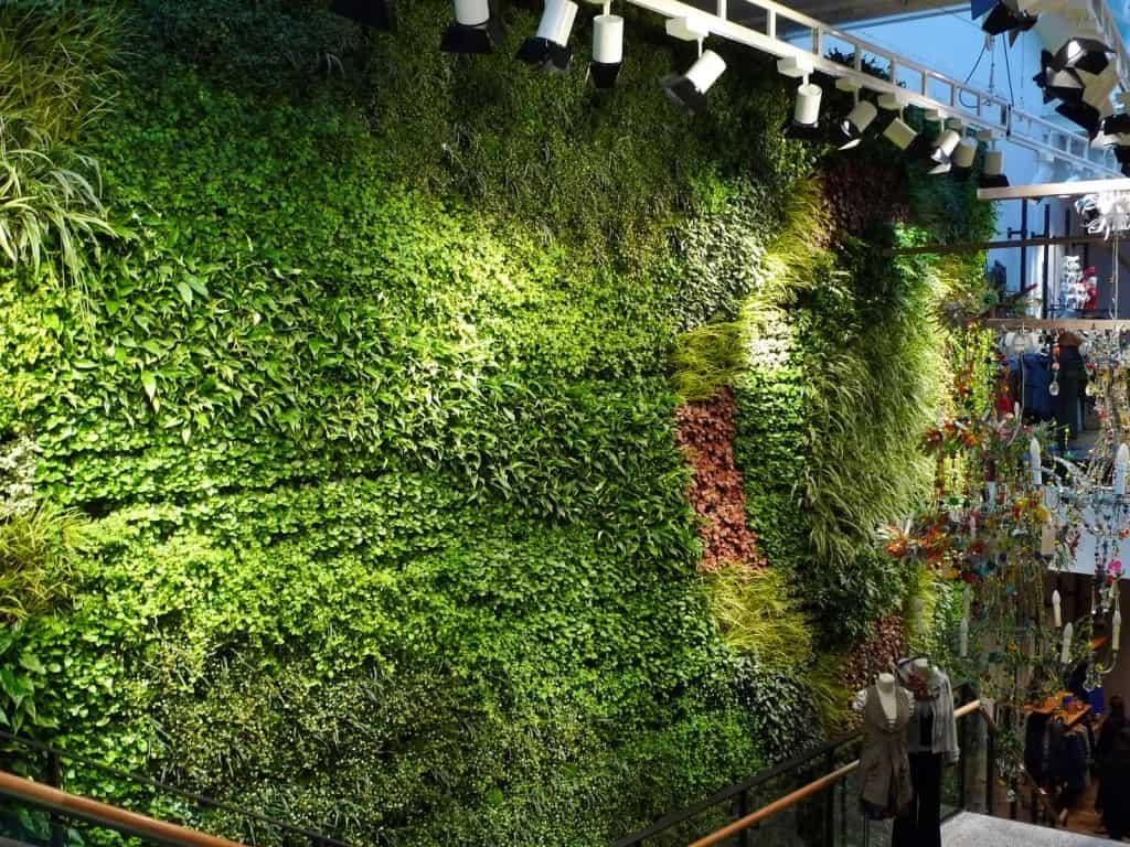 Thi công tường xanh