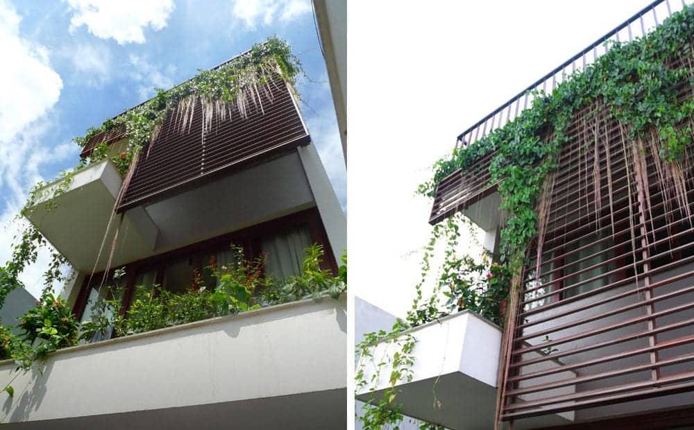 không gian xanh trong nhà phố xanh