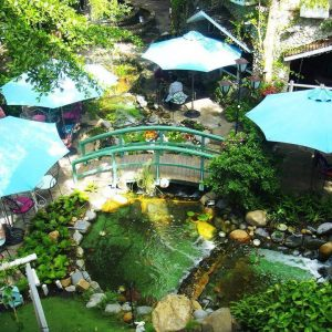Mẫu sân vườn quán cafe có suối nước