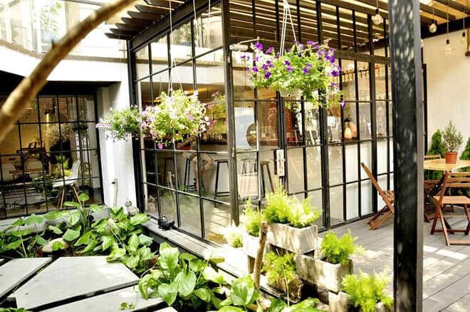 Thiết kế sân vườn quán cafe có cây cối và nhà kính