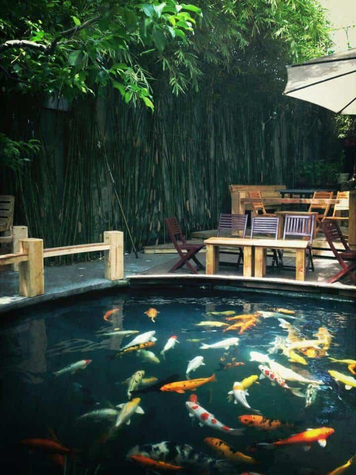 Thiết kế sân vườn quán cafe hồ cá Koi